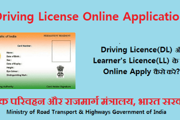 Steps To Consider In Applying For Valid Driving License Online